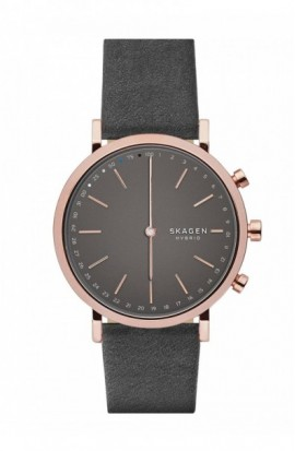 Watch Skagen Hybrid Hald Gray SKT1207