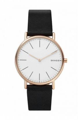 Watch Skagen Signatur Slim SKW6430