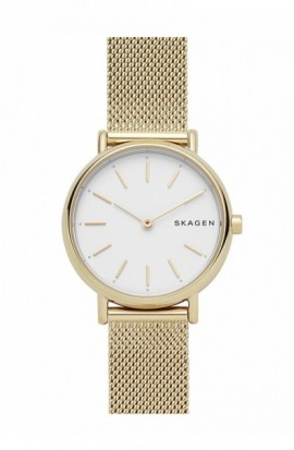 Watch Skagen Signatur SKW2693