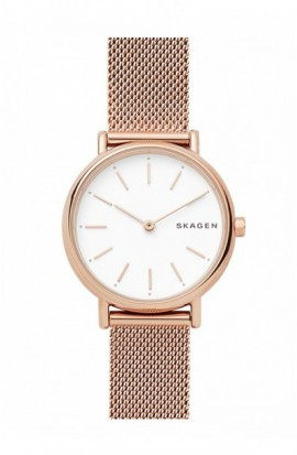 Watch Skagen Signatur SKW2694