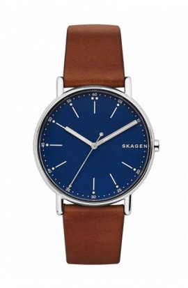 Watch Skagen Signature SKW6355